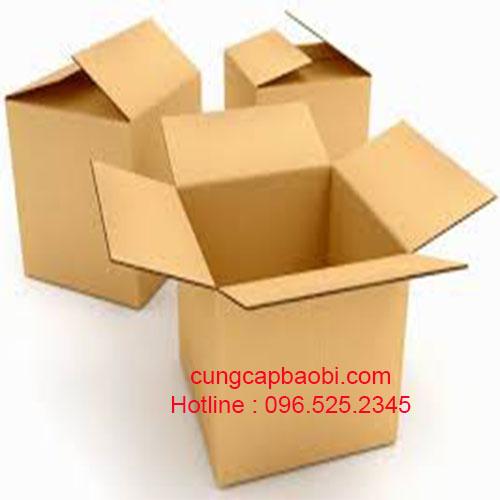 Thùng carton đẹp 1